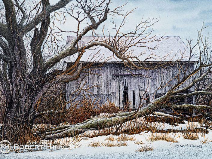 Robert Hinves - Abandoned Barn Near Fernwood Gardens