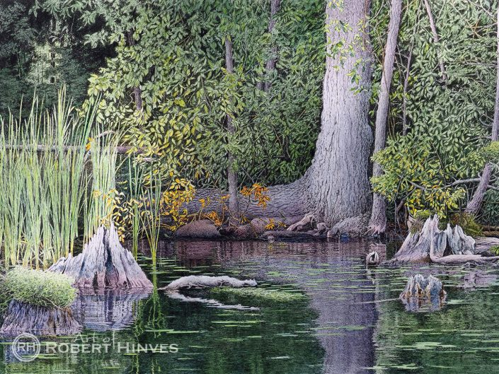 Robert Hinves - View from a Houseboat Pigeon Lake