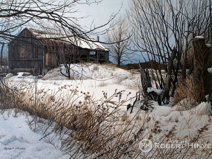 Robert Hinves - Winter in Prince Edward County